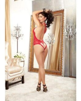 Halter Stretch Lace Teddy w/Plunging Neckline, Halter Ties & Heart Cut Out on Back Red O/S